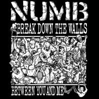 numb2014back